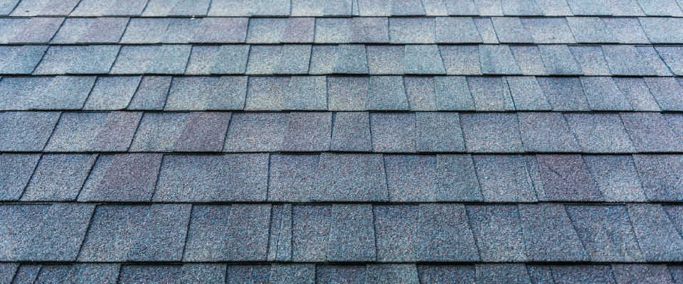 Tile shingle roof